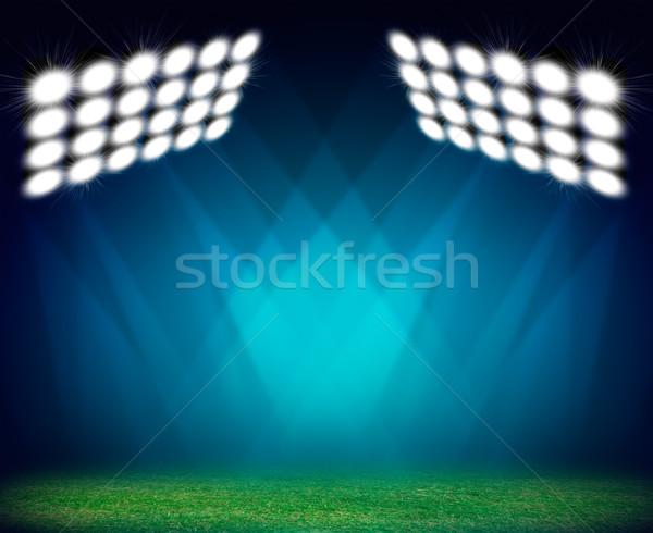 Grünen Fußballplatz beleuchtet Gras Menge Fußball Stock foto © cherezoff