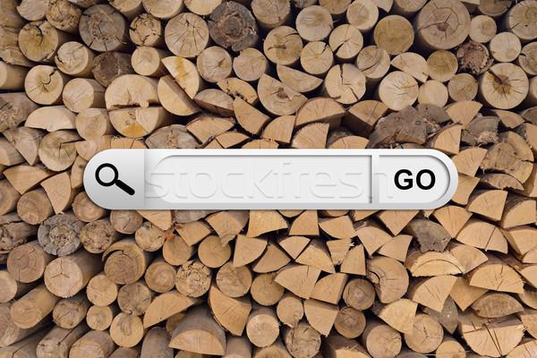 Búsqueda bar navegador madera picado leña Foto stock © cherezoff