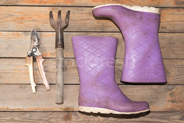 Wellingtons with garden tools Stock photo © cherezoff