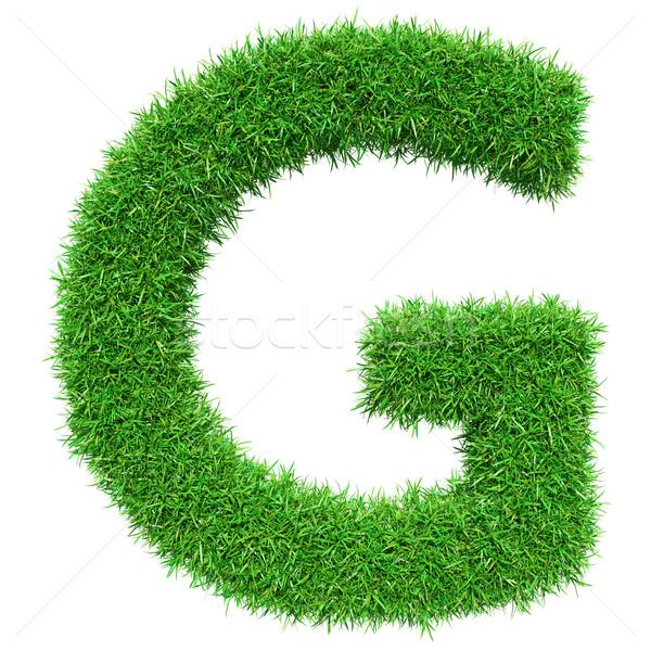 Green Grass Letter G Stock photo © cherezoff