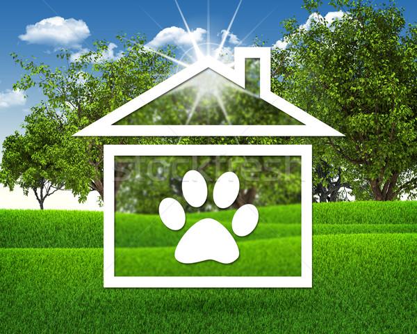 Casa ícone pegada animal grama verde blue sky Foto stock © cherezoff