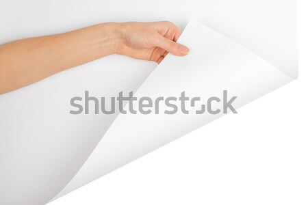 Humans left hand holding empty card Stock photo © cherezoff