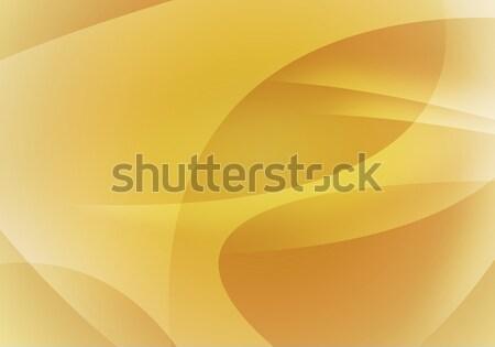 Resumen naranja líneas contemporáneo estilo negocios Foto stock © cherezoff