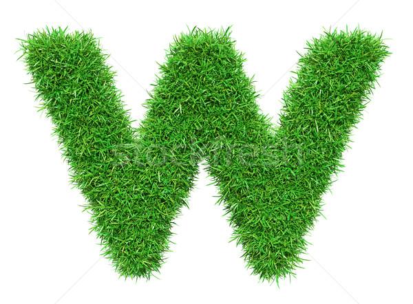 Zielona trawa list w odizolowany biały chrzcielnica projektu Zdjęcia stock © cherezoff