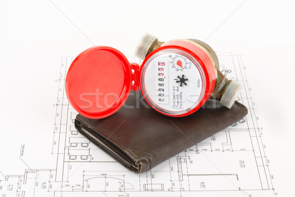 Water meter with purse Stock photo © cherezoff