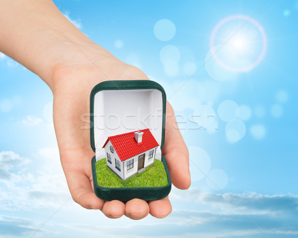 Empty ring box with house in humans arm Stock photo © cherezoff
