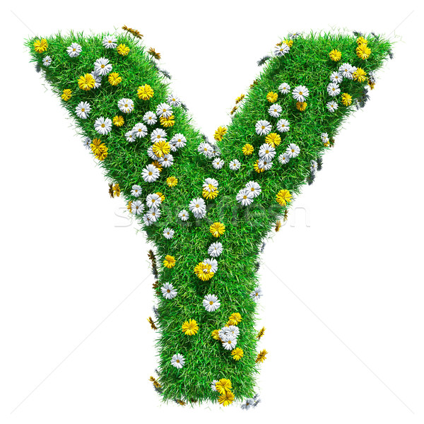 Letter Y Of Green Grass And Flowers Stock photo © cherezoff