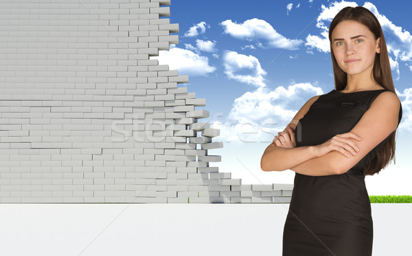 Thoughtful businesswoman in dress looking at camera. Dilapidated brick wall, green meadow with sky a Stock photo © cherezoff