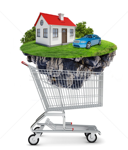 House and car in shopping cart Stock photo © cherezoff