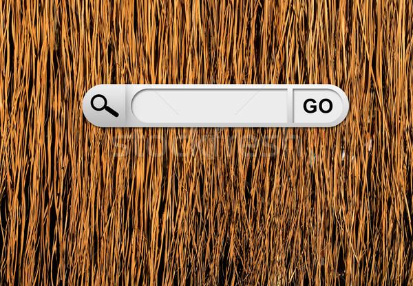 Búsqueda bar navegador amarillo secar hierba Foto stock © cherezoff