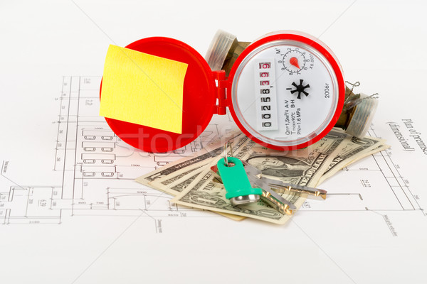 Red water meter with cash and keys on draft Stock photo © cherezoff