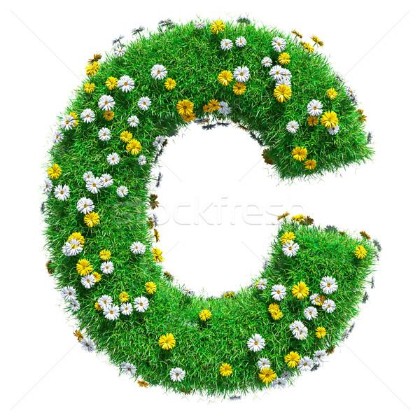 Letra c grama verde flores isolado branco fonte Foto stock © cherezoff