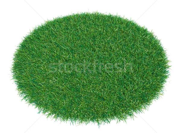 緑の草 アリーナ 孤立した 3D レンダリング 白 ストックフォト © cherezoff