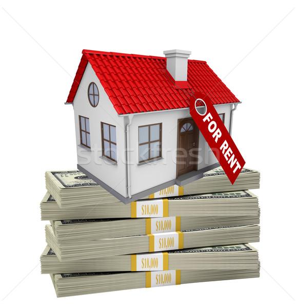 House on stack of money Stock photo © cherezoff