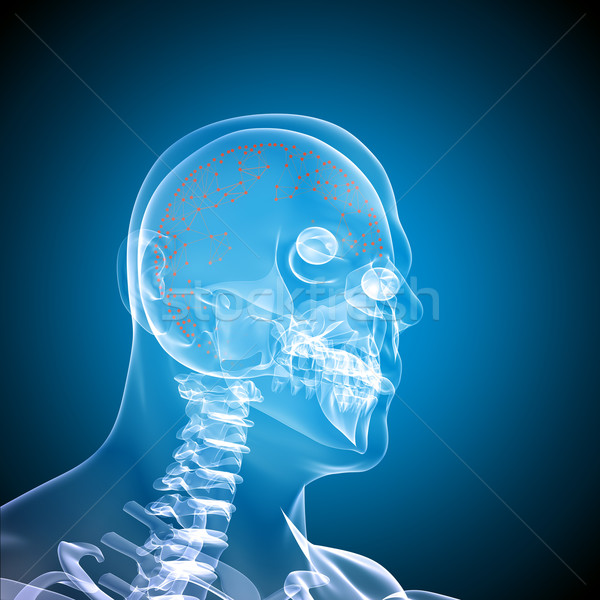 Side face skull x-ray image Stock photo © cherezoff