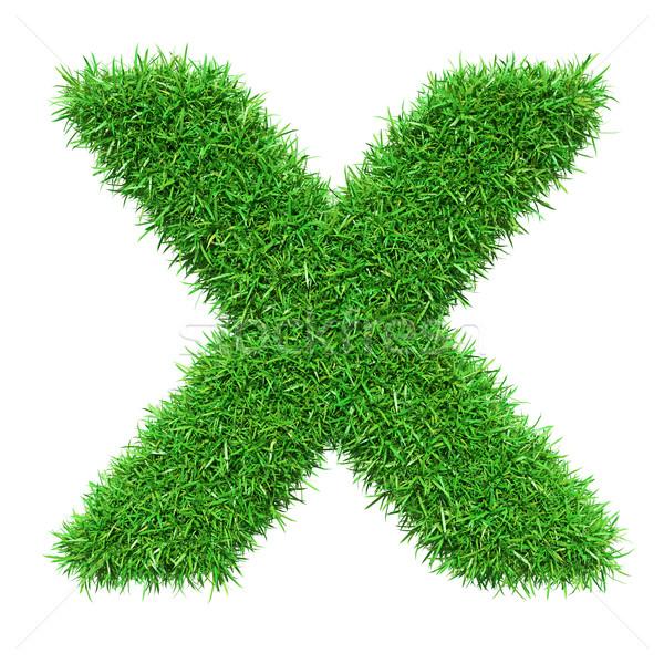 Green Grass Letter X Stock photo © cherezoff