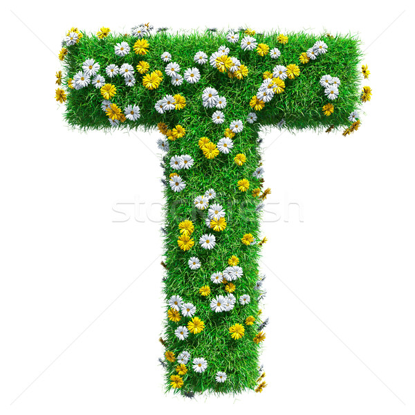 Letter T Of Green Grass And Flowers Stock photo © cherezoff