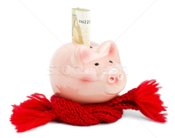 Piggy bank with red scarf and euro bill Stock photo © cherezoff