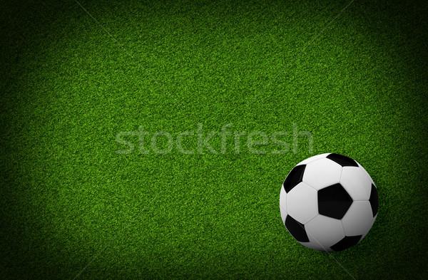 Empty football field Stock photo © cherezoff