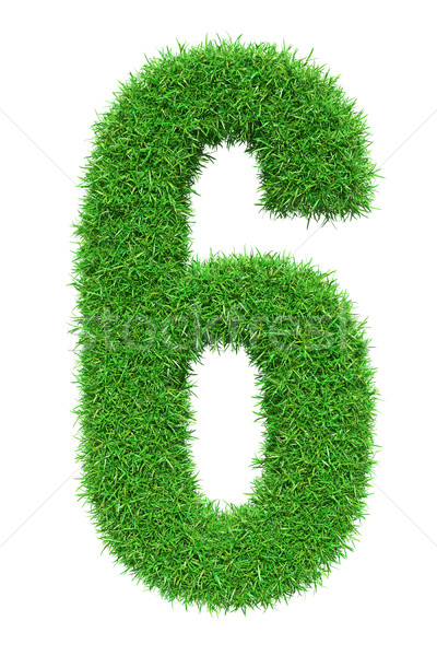 Green grass number 6 Stock photo © cherezoff