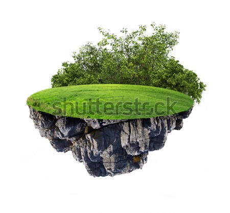Earth with trees and green grass in travel bag Stock photo © cherezoff