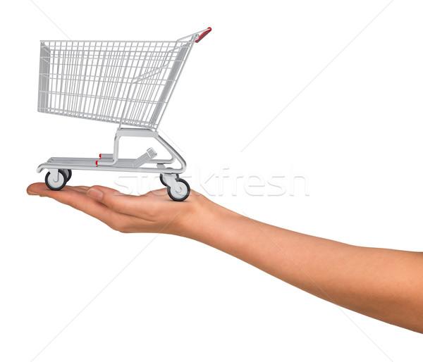 Shopping cart in humans hand Stock photo © cherezoff