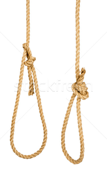 Rope loop isolated on white background Stock photo © cherezoff