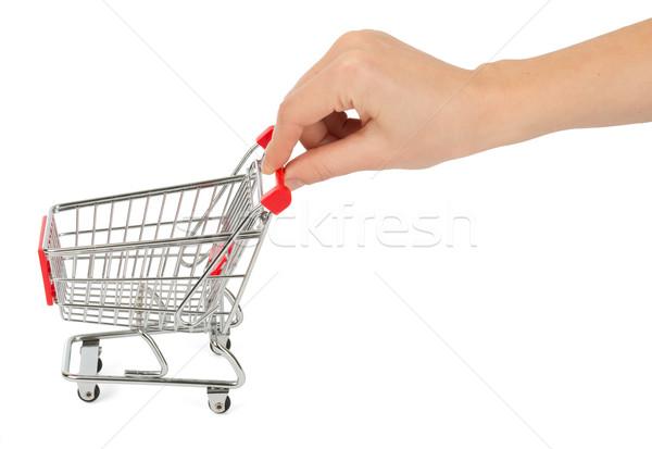 Humans hand holding shopping cart Stock photo © cherezoff