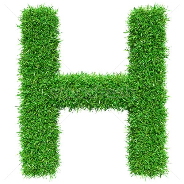 Green Grass Letter H Stock photo © cherezoff