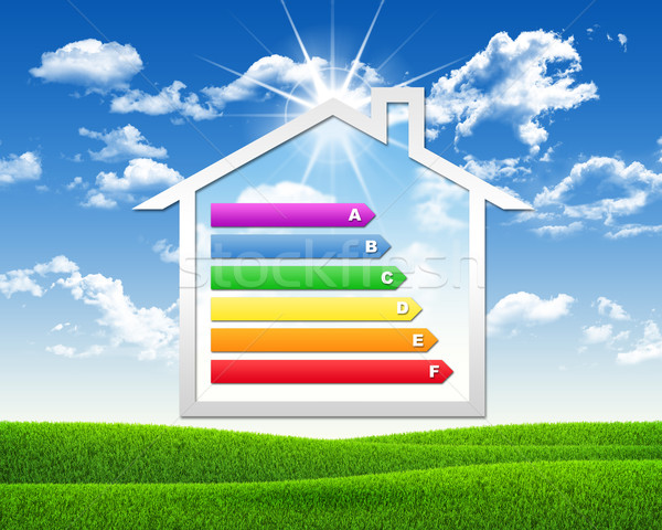 House icon with grid energy efficiency Stock photo © cherezoff
