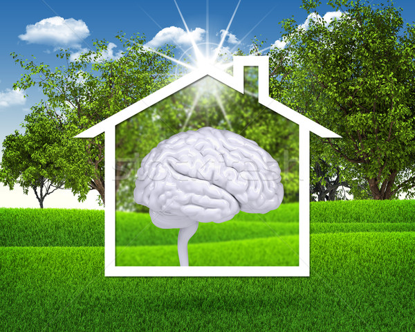 Casa ícone branco cérebro grama verde blue sky Foto stock © cherezoff
