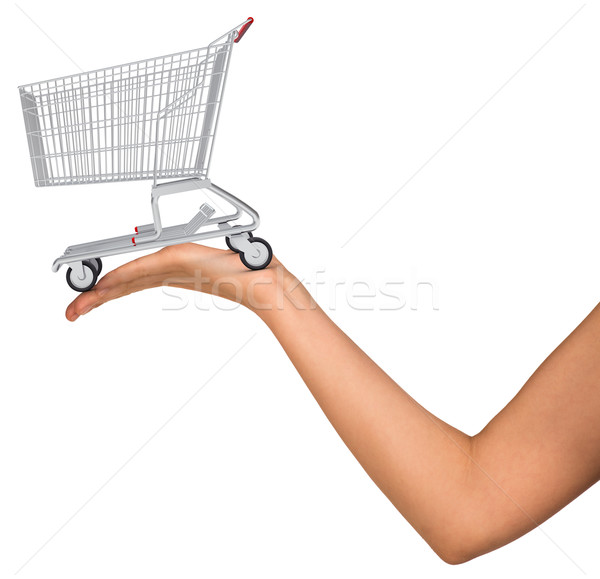Shopping cart in womans hand Stock photo © cherezoff