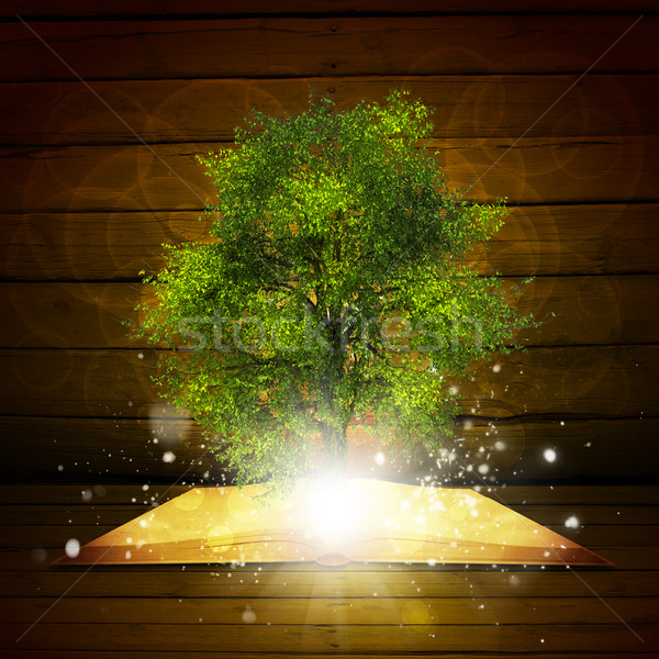 Open book with magical green tree and rays of light Stock photo © cherezoff