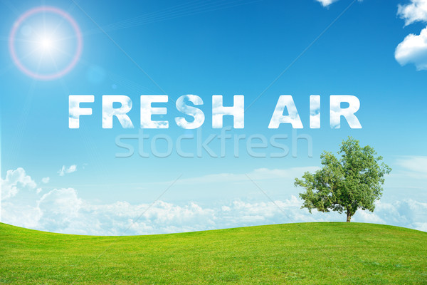 Landscape with fresh air word Stock photo © cherezoff