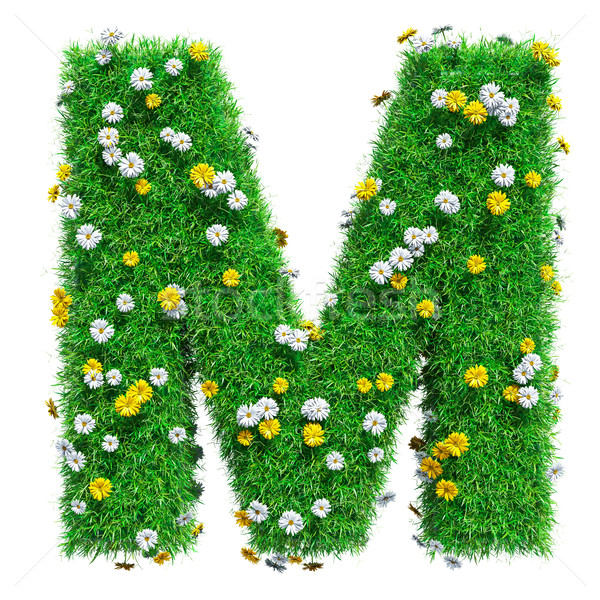 Letter M Of Green Grass And Flowers Stock photo © cherezoff