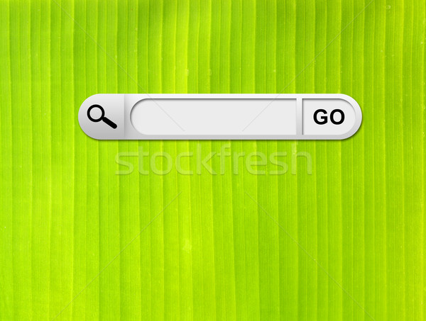 Búsqueda bar navegador frescos verde hoja de palma Foto stock © cherezoff