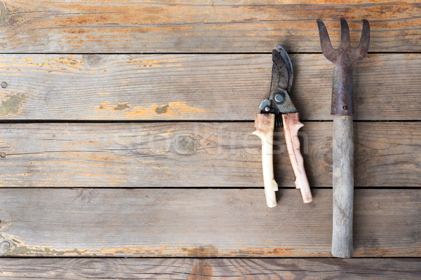 Wooden texture background with garden tools Stock photo © cherezoff