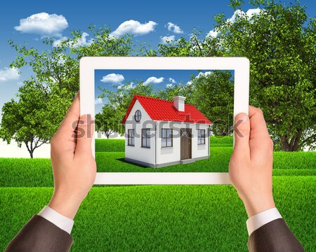 White house in hand for sale with red roof, crown, chimney of screen laptop. Background sun shines b Stock photo © cherezoff