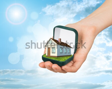 White cottage in hand with green roof. Background sun shines brightly on right Stock photo © cherezoff