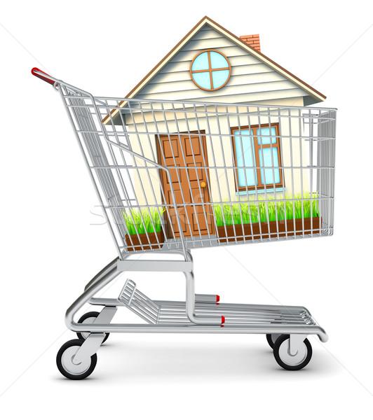 House in shopping cart Stock photo © cherezoff