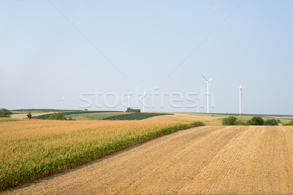 Nature with wind power station  Stock photo © cherezoff