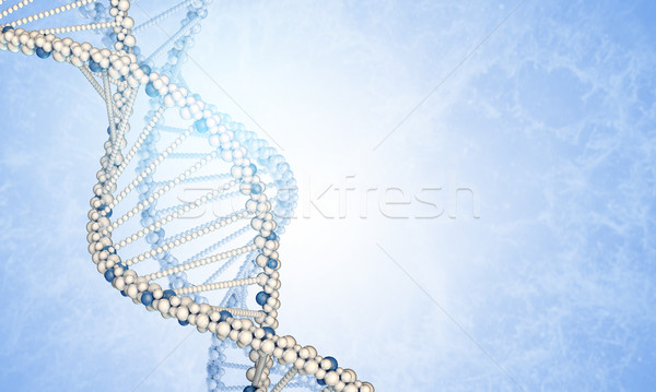 DNA models and blured smoke Stock photo © cherezoff