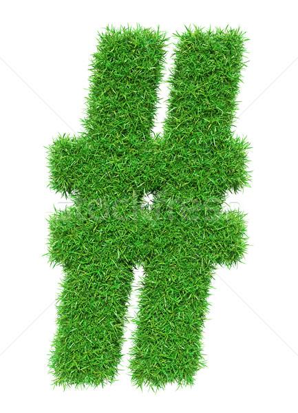 Green grass lattice Stock photo © cherezoff