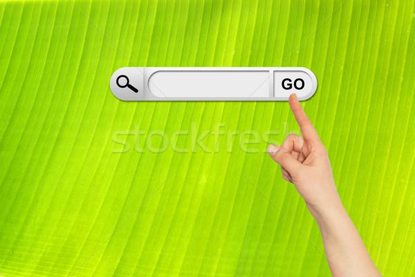 Stockfoto: Menselijke · hand · Zoek · bar · browser · vers · groene