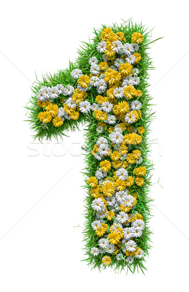 Number 1 of Green Grass And Flowers Stock photo © cherezoff