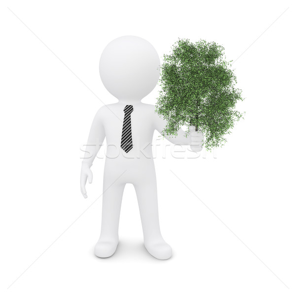 Blanke man groene boom geïsoleerd witte achtergrond Stockfoto © cherezoff
