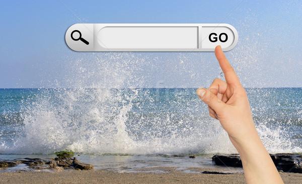 Emberi kéz keresés bár böngésző hullámok tengerpart Stock fotó © cherezoff