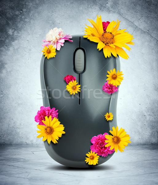 Mouse de computador flores cinza parede computador mouse Foto stock © cherezoff