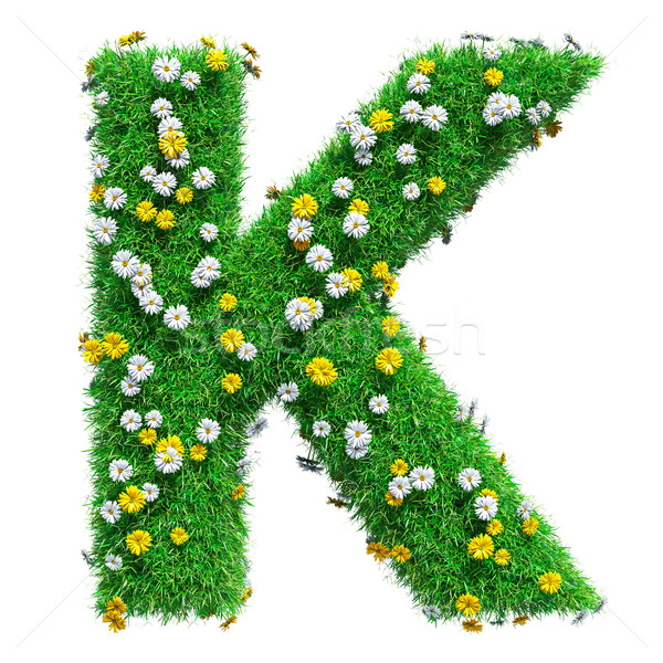 Letter K Of Green Grass And Flowers Stock photo © cherezoff