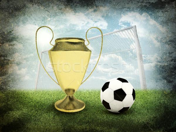 футбольным мячом ворот золото Кубок области спортивных Сток-фото © cherezoff